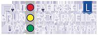Fahrschule Davos Logo